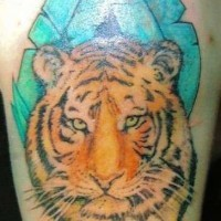 Tiger head in greens tattoo on shoulder