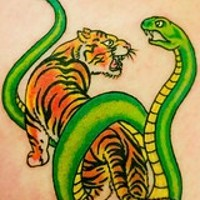 Tiger and snake fight tattoo in colour