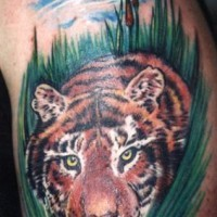 Tiger crawling in greens coloured tattoo
