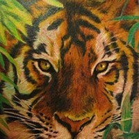Highly detailed tiger in greens tattoo