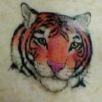 Realistic tiger head coloured tattoo