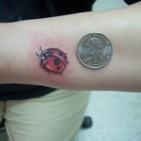 Winziger netter Marienkäfer Tattoo