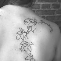 Tree scapula tattoo with vine of leaves