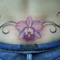 Flower lower back tattoo, styled  iris
