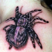 3d große Spinne Tätowierung an der Schulter