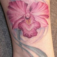 Pink tender orchid tattoo