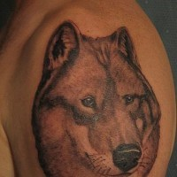 Wolf with good eyes tattoo on shoulder