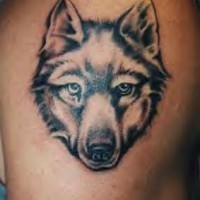 Wolf head with good eyes tattoo