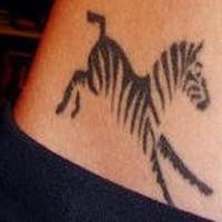 Tatuaggio sulla pancia la zebra bianca nera