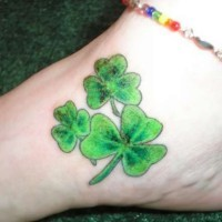 Three green irish clover tattoo on foot