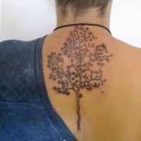 Tatuaje de árbol  fino simple en la espalda
