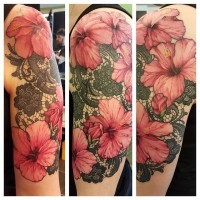 Tremendous pale pink lifelike hibiscus flowers and black lace ornament sensuous shoulder tattoo