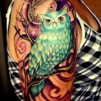 Tatuaggio colorato sul braccio il gufo sul ramo & la luna