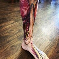 Unbelievable multicolored foot and leg tattoo of realistic bones and muscles