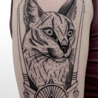 Illustrative style colored shoulder tattoo of wild cat with moon