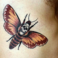 Usual colored side tattoo of butterfly with skull