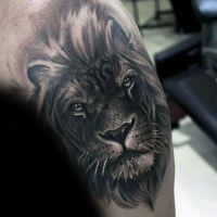 Very realistic black ink shoulder tattoo of lion head