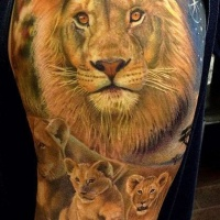 Very realistic looking big colored lion family tattoo on shoulder