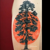 Vintage style black ink lonely big tree tattoo combined with orange sun