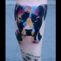 Tatuaggio colorato sulla gamba la testa del cane