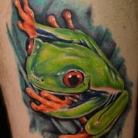 Watercolor tree frog tattoo