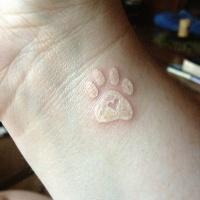 impronto di zampa stampa inchiostro bianco tatuaggio sul polso
