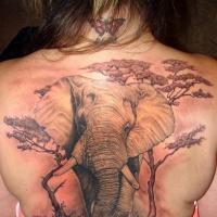 vita selvaggia molto dettagliato colorato massiccio elefante con alberi tatuaggio su schiena superiore