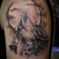 Tatuaggio colorato sul deltoide il lupo che ulula alla luna
