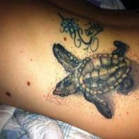 bellissima tartaruga dettagliata tatuaggio sul braccio