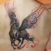 Wonderful pegasus tattoo on back