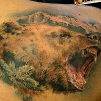Wundervolles Porträt eines Grizzlybären Tätowierung am Schulterblatt
