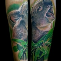 Wonderful very detailed arm tattoo of lifelike koala bear with leaves