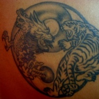 Yin yang tattoo dragon and tiger fight