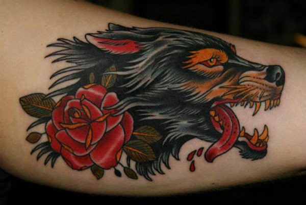 Traditional old style furious bloody wolf and red rose colored tattoo