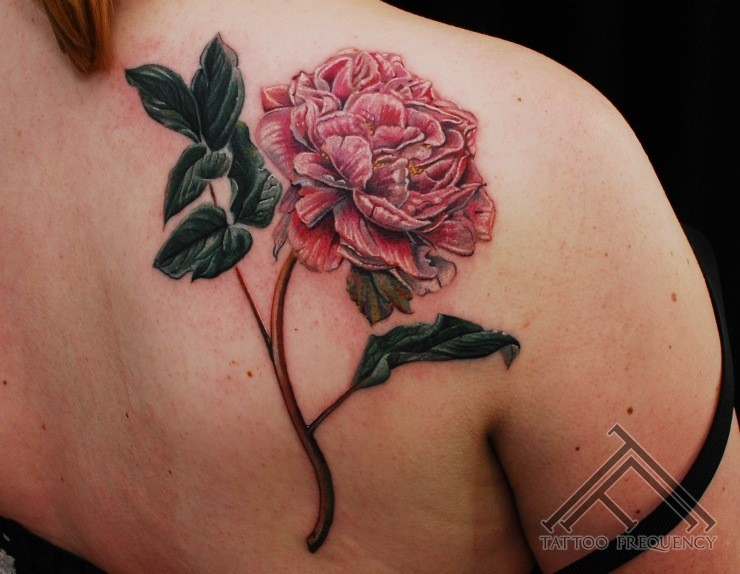 Typical accurate painted detailed back tattoo of rose flower