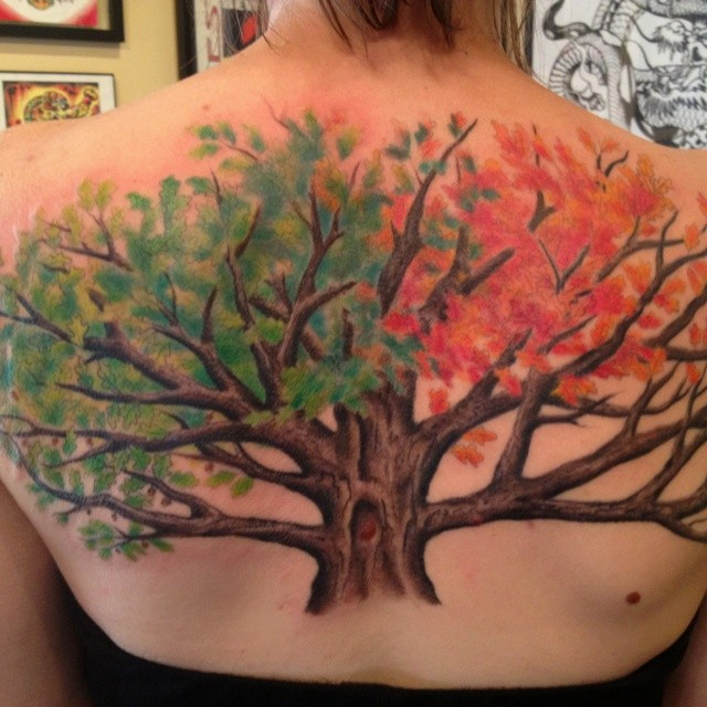 Unique designed multicolored lonely tree tattoo on back with various colored leaves
