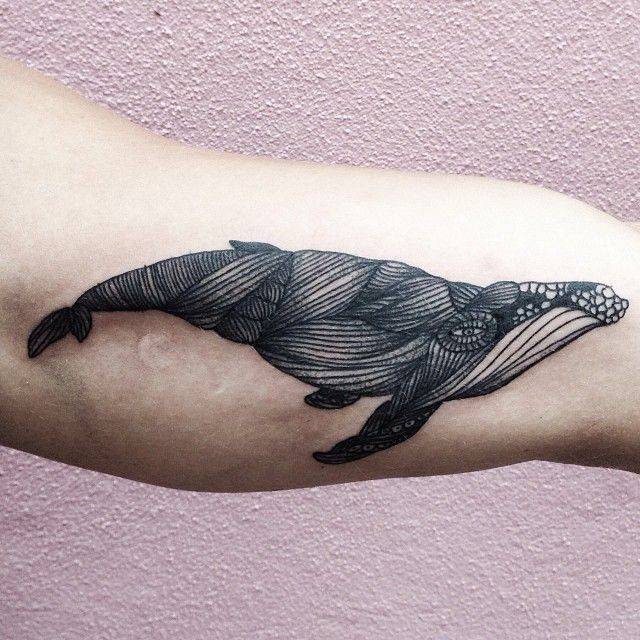 Unusual style painted little black and white wale tattoo on arm