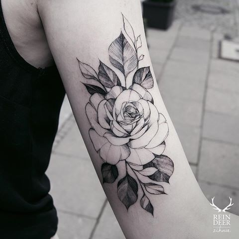 usual blackwork style zihwa typical arm tattoo  big rose