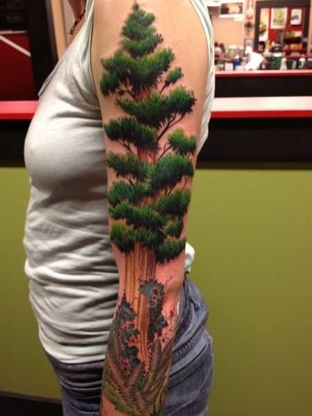 Very realistic colored big American tree tattoo on sleeve