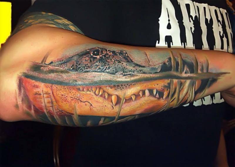 molto realistico grande testa di alligatore tatuaggio su braccio