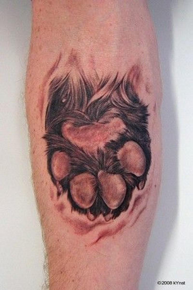 molto realistico piccolo colorato zampa del animale tatuaggio su braccio