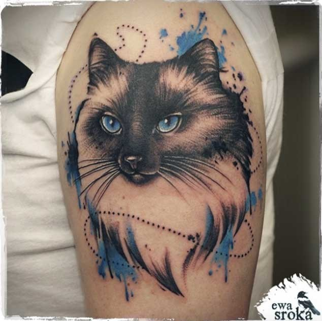 Vintage style colored cute cat tattoo on shoulder with blue eyes