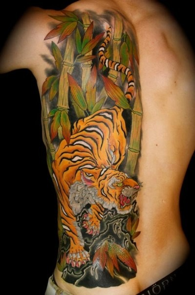 Vivid colors japanese tiger tattoo on ribs