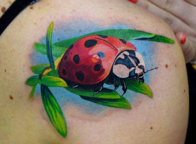 Vivid colors ladybug tattoo on shoulder