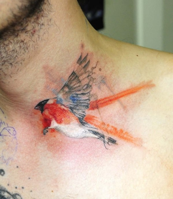 Watercolor bird by koraykaragozler
