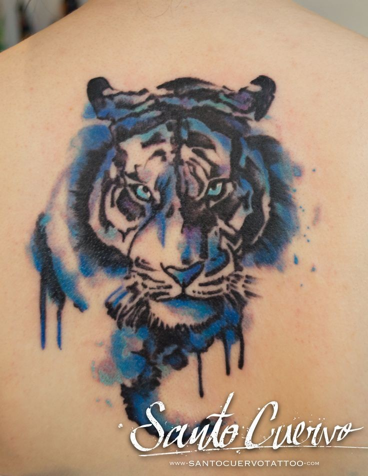Watercolor style big blue colored upper back tattoo of tiger