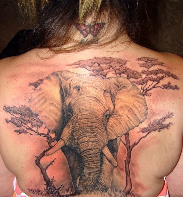 Wild life themed massive very detailed colored elephant with trees tattoo on whole back