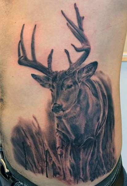 Wildlife deer side and belly tattoo in realism style