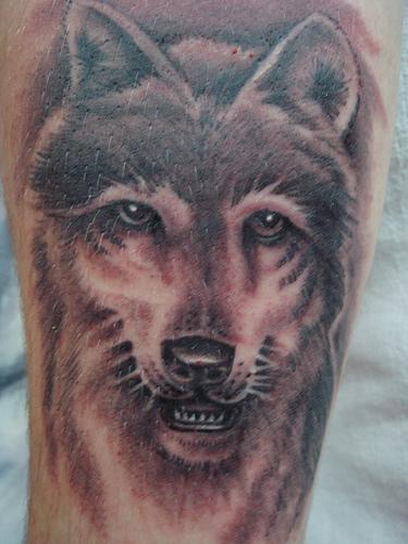 Tatuaggio carino sul deltoide la faccia del lupo