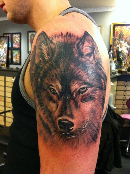 Tatuaggio colorato sul deltoide la faccia del lupo